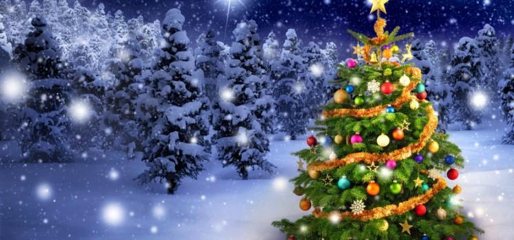 Frohe Weihnachten und ein gesundes neues Jahr 2015 !